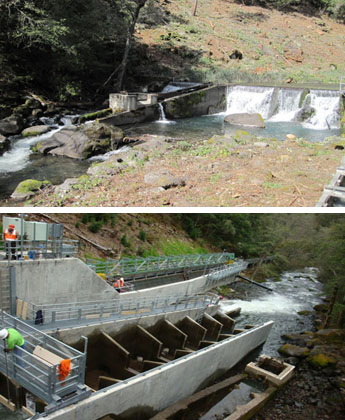 pre- and post-project comparison of the fish ladder at North Battle Creek Feeder