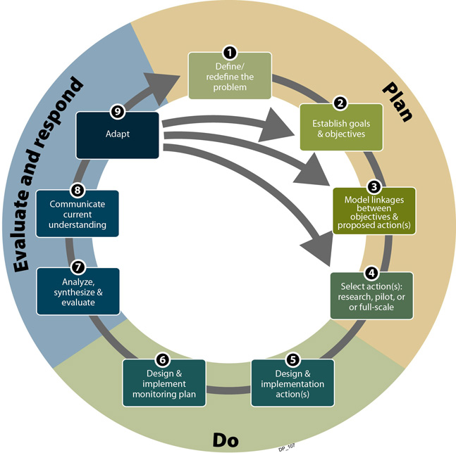 adaptive management framework diagram
